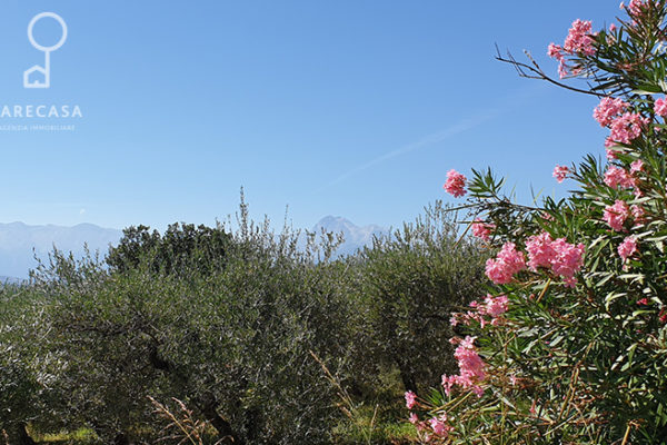 Terreno Edificabile Panoramico a Colleatterato Alto - Teramo